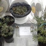 Συνελήφθη 48χρονος για ναρκωτικά στη Λακωνία