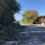Έκοψαν τα δέντρα και καθάρισαν τους δρόμους στην Αρχαία Κόρινθο (video – φώτο)